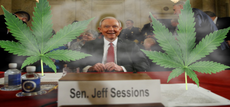 "Jeff Sessions Got High For The First Time Over The Weekend. ""My bad y'all, I get it now."""