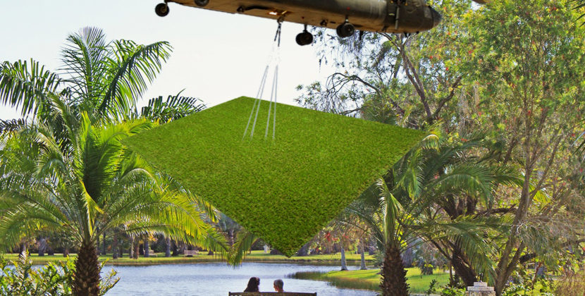Fairchild Tropical Garden to be Replaced With Fake Grass