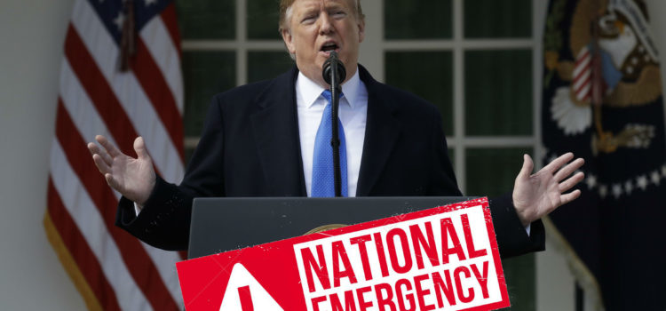 Trump Declared National Emergency