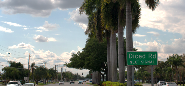 """Dykes Road Renamed """"Diced Road"""" After Protest"""