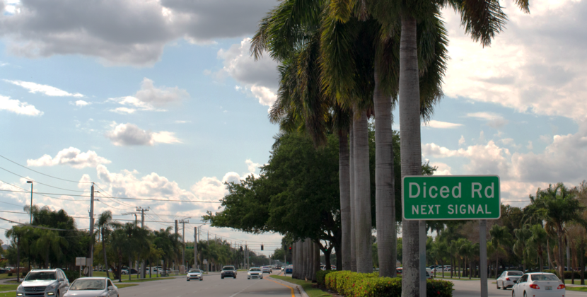 "Dykes Road Renamed ""Diced Road"" After Protest"