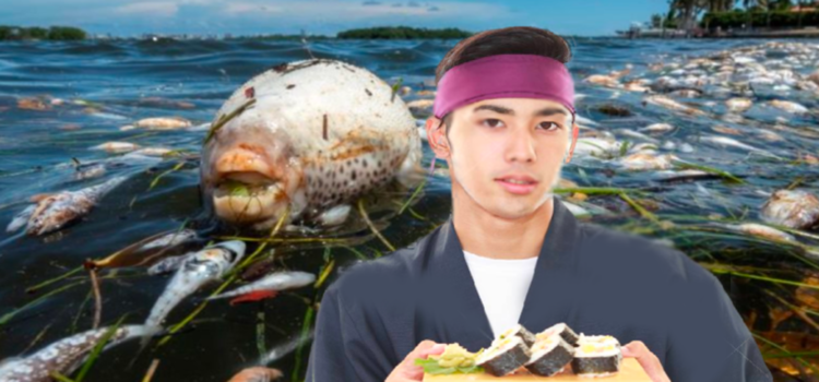"""New """"Biscayne Bay Sushi"""" Offers Local Seafood at Discount Prices. Considering Name Change."""
